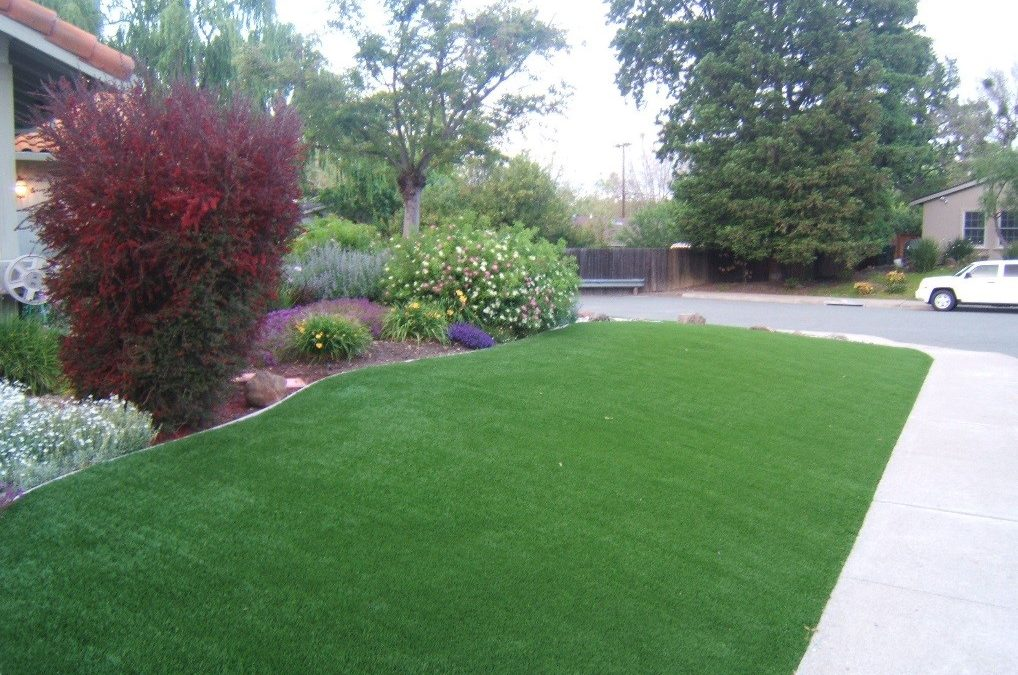 Looking to Upgrade Your Front Lawn? Here Are Some Landscaping Tips to Consider