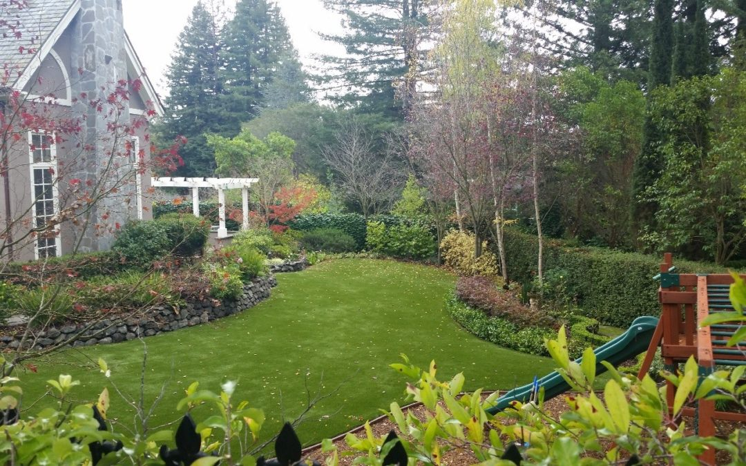 Deciding If You Should Get Artificial Turf Installed? Understand Its Maintenance Requirements