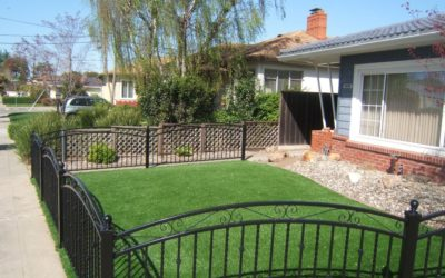 How Artificial Turf Can Transform Your Backyard Barbecues