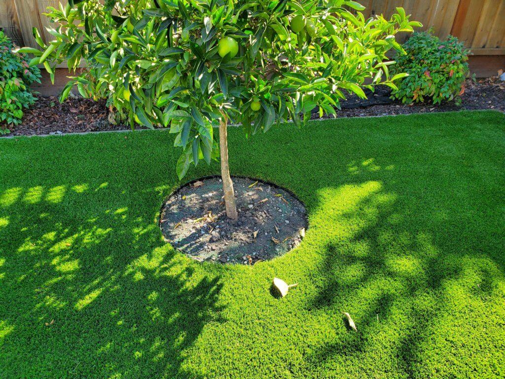 artificial grasslandscape tree
