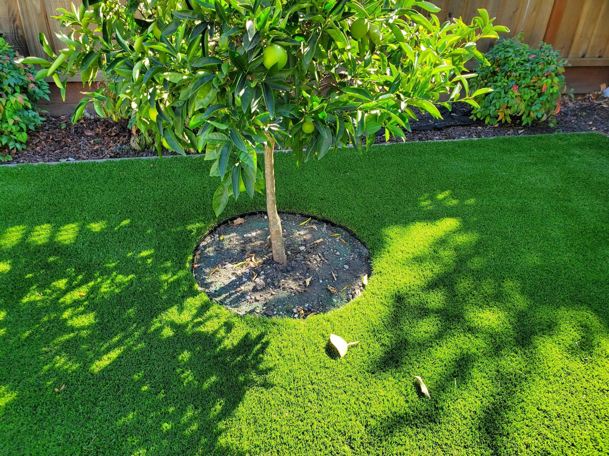 artificial grasslandscape tree